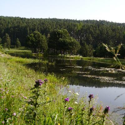 sentier d'inetrprétation des paysages du Capcir, au départ du lac de l'Olive